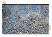 Northern Colors Carry-all Pouch