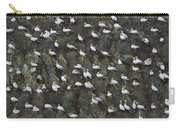 Northern Gannet Colony Shetland Islands Carry-all Pouch