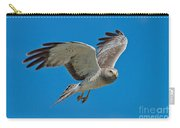 Northern Harrier Male In Flight Carry-all Pouch