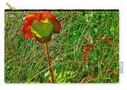 Northern Pitcher Plant In French Mountain Bog In Cape Breton Highlands-nova Scotia  Carry-all Pouch