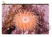 Northern Red Anemone Carry-all Pouch