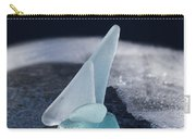 Northwest Passage Carry-all Pouch by Barbara McMahon