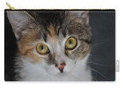 Nosey Lil Kitty Carry-all Pouch