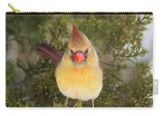 Not-so-angry Bird Carry-all Pouch