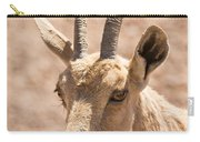 Nubian Ibex Capra Ibex Nubiana 1 Carry-all Pouch