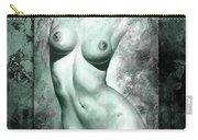 Nude Details - Digital Color Version Frame Aqua Black Carry-all Pouch