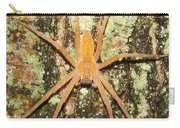 Nursery Web Spider Carry-all Pouch