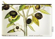 Nutmeg Plant Botanical Carry-all Pouch