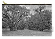 Oak Alley 3 Monochrome Carry-all Pouch