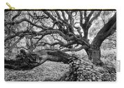 Oak And Ivy Bw Carry-all Pouch