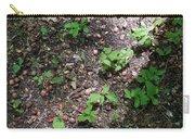 Oak Nursery Carry-all Pouch