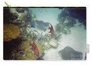 Ocean Bottom Carry-all Pouch