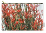 Ocotillo After A Heavy Rain Carry-all Pouch