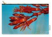 Ocotillo Flowers Carry-all Pouch by Robert Bales