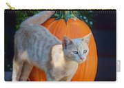 October Kitten #1 Carry-all Pouch