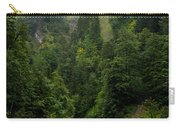 Old Bridge - Austrian Alps - Austria Carry-all Pouch
