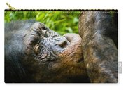 Old Chimp Carry-all Pouch