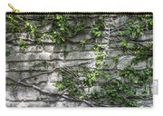 Old Coquina Wall Carry-all Pouch