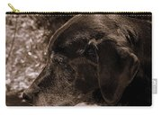 Old Dog Carry-all Pouch