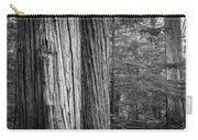 Old Growth Cedars Glacier National Park Bw Carry-all Pouch