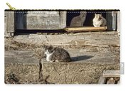 Old Knox Church Cats #2 Carry-all Pouch