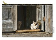 Old Knox Church Cats Carry-all Pouch