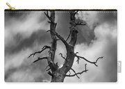 Old Trees Reach For The Sky Carry-all Pouch