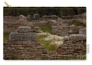Olympia Ruins And Wild Flowers   #9684 Carry-all Pouch