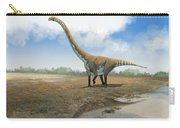 Omeisaurus Tianfuensis, An Euhelopus Carry-all Pouch