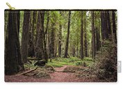 On The Enchanted Path Carry-all Pouch