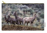 On The Ledge Carry-all Pouch by Mike  Dawson