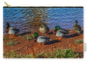 On The Shore Carry-all Pouch