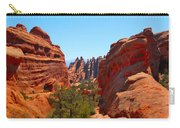 On The Trail At Arches Np Carry-all Pouch
