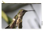 One Out Of Place - Hummingbird Carry-all Pouch