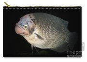 One Strange Fish Carry-all Pouch