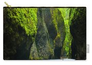 Oneonta River Gorge Carry-all Pouch