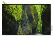 Oneonta River Gorge Carry-all Pouch by Inge Johnsson