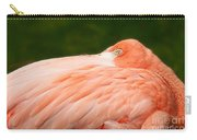 Flamingo With An Open Eye Carry-all Pouch