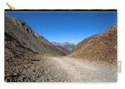 Ophir Loop Pass 1 Carry-all Pouch