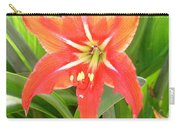 Orange Amaryllis Flower Blooms In Springtime Carry-all Pouch