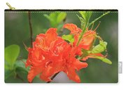 Orange Azalea At Moore State Park Carry-all Pouch