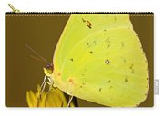 Orange Barred Sulfur Butterfly Carry-all Pouch