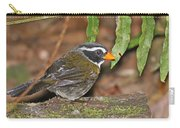 Orange-billed Sparrow Carry-all Pouch