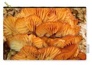 Orange Cluster Fungi Carry-all Pouch