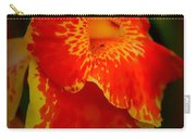 Orange Delight Carry-all Pouch by Debra Forand