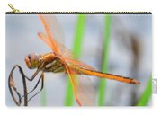 Orange Dragonfly On The Water's Edge Carry-all Pouch