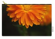 Orange Feathers Carry-all Pouch