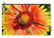 Orange Fiery Gaillardia Flower And Bee Macro Carry-all Pouch