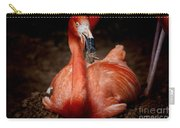 Orange Flamingo Nesting Carry-all Pouch