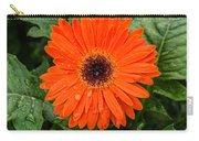 Orange Gerber Daisy 3 Carry-all Pouch